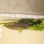 bouquet garni2
