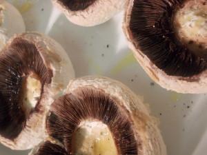 champignons farcis en croute provencale 3